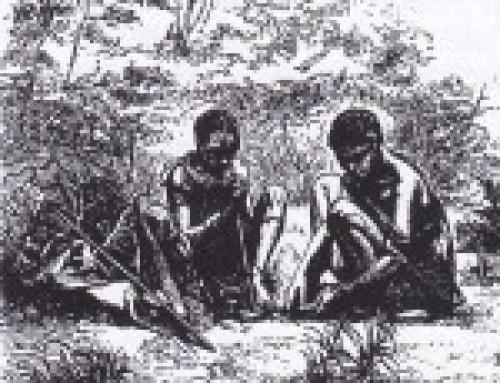 Struttura sociale dei Boscimani e riti