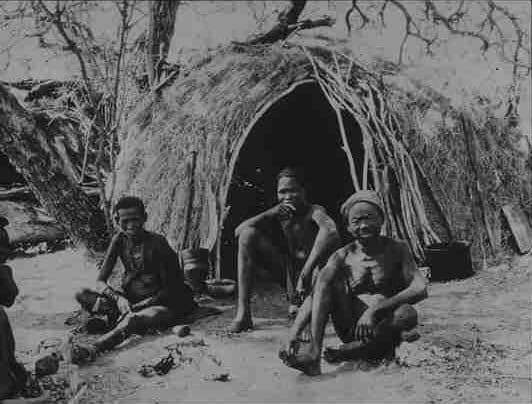 Cultura dei Boscimani. Una tipica capanna di Boscimani costruita con erba e sterpi tenuti insieme da funi.