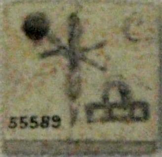 """Tavoletta di Hotep-Neith. Visibile è il simbolo con scudo e frecce incrociate della dea Neith usato dalle prime regine di Egitto. """"BoneLabelQueenNeithhotep-BritishMuseum-August21-08"""" von User:Captmondo (Own work (photo)). Lizenziert unter Creative Commons Attribution-Share Alike 3.0 über Wikimedia Commons - http://commons.wikimedia.org/wiki/File:BoneLabelQueenNeithhotep-BritishMuseum-August21-08.jpg#mediaviewer/Datei:BoneLabelQueenNeithhotep-BritishMuseum-August21-08.jpg"""