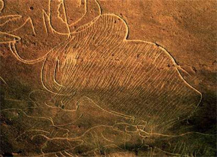Incisione mammut. Grotta di Cussac, Département Dordogne, gravettiano 28.000 - 22.000 anni fa. Foto: CNP, Ministère de la Culture