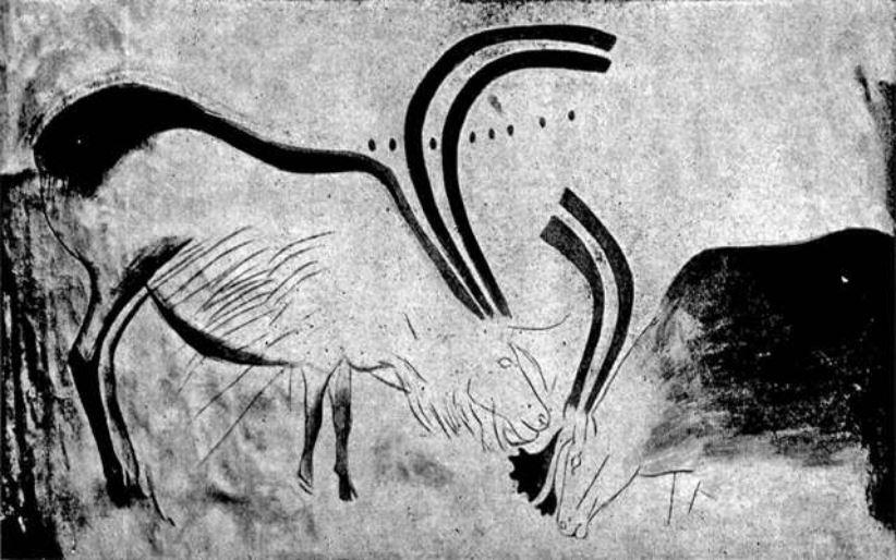 Renne, grotta Font de Gaume, 210 cm x 130 cm, Magdaleniano. Les Eyzies-de-Tayac-Sireuil, Département Dordogne. Foto and text: Capitan et Breuil 1903