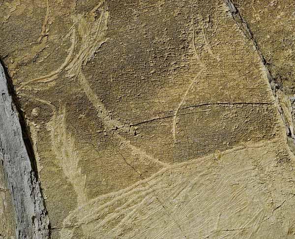 Altxerri_cave_-_Antelope-GipuzkoaKulturaCC-BY-SA-2.0