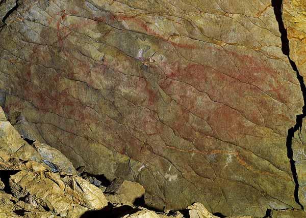 Bison-GipuzkoaKulturaCC-BY-SA-2.0