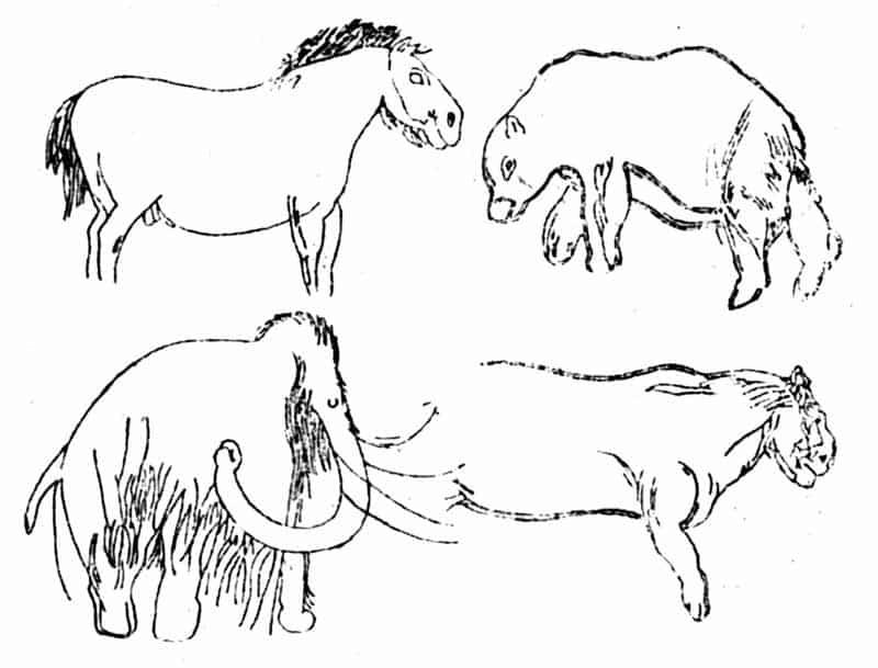 Grotta Les Combarelles. Incisioni di cavallo, mammut, orso e leone delle caverne. Dominio pubblico.