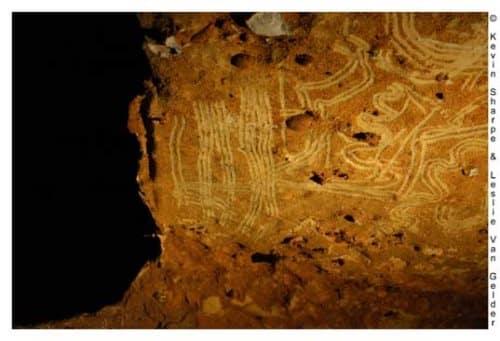 Grotta di Rouffignac. Foto: Sharpe-Van-Gelder-CC-BY-2.5