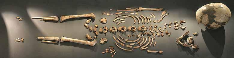 Riparo La Madeleine, scheletro di bambino. Foto: Sémhur CC-BY-SA-3.0