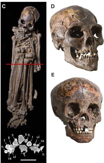 CC BY 2.5 Sereno P.C. Garcea E.A.A., Jousse H., Stojanowski C.M., Saliège J-F., et al. 2008. Lakeside Cemeteries in the Sahara 5000 Years of Holocene Population and Environmental Change- PLoS ONE