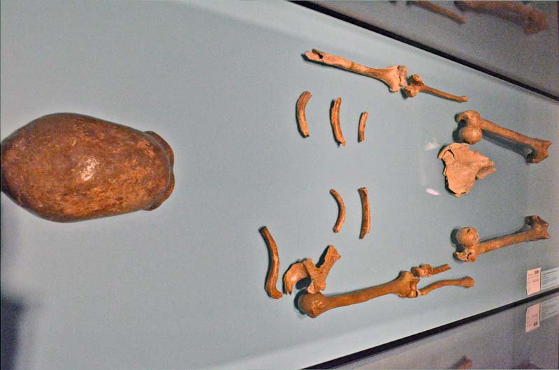 800-landesmuseum-bonn-neanderthal-originale-DSC_3670