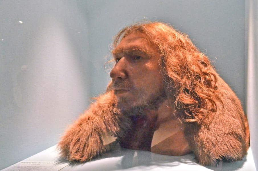 900-A-L-recostruzione-neanderthal-originale-DSC_3603