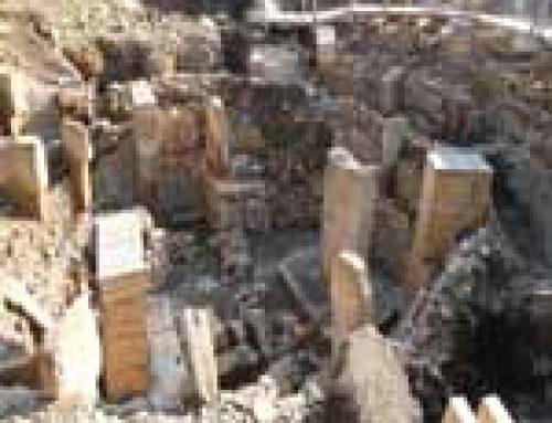 Göbekli Tepe. Quando i templi erano rotondi