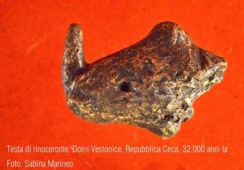 testina di rinoceronte, Dolni Vestonice, Repubblica Ceca. 32.000 anni fa. foto - sabina marineo