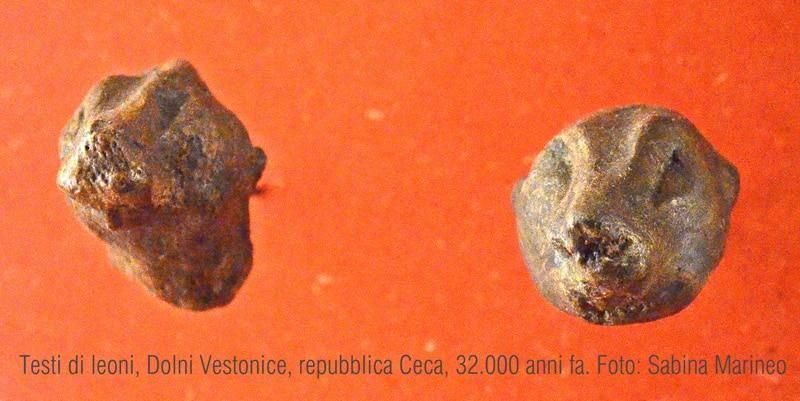testine di leone, Dolni Vestonice, Repubblica Ceca. 32.000 anni fa. foto - sabina marineo