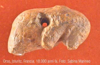 orso, Isturitz, francia. 18.000 anni fa. foto - sabina marineo