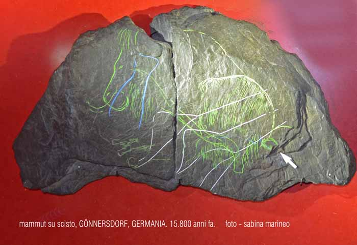 mammut su scisto, Gönnersdorf, Germania. 15.800 anni fa. foto - sabina marineo