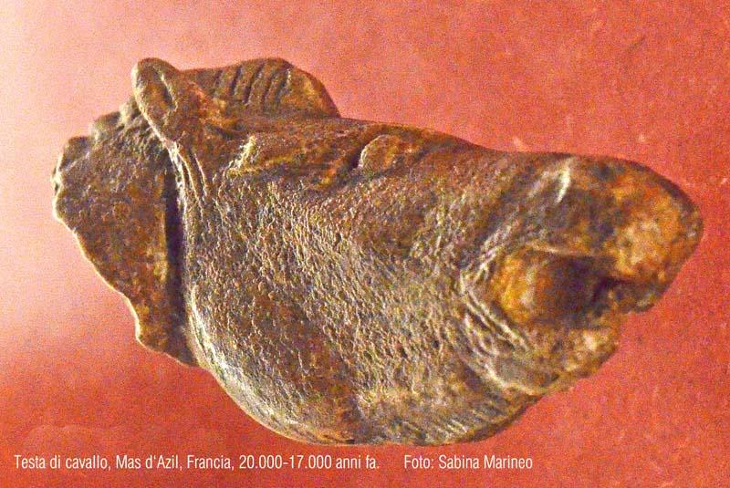 testa di cavallo, Mas d'Azil, Francia. 15.000 anni fa. foto - sabina marineo