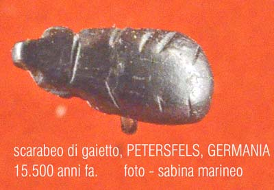 scarabeo di giaetto, Riparo Petersfels, Germania. 15.500 anni fa. foto - sabina marineo