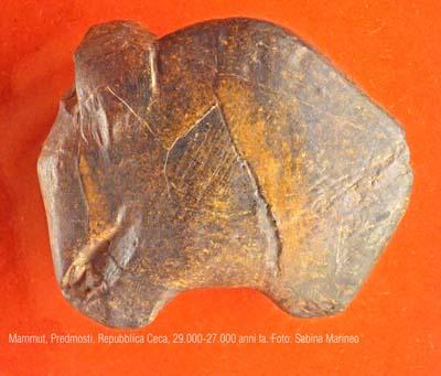 mammut, Predmosti, repubblica Ceca. 29.000 - 27.000 anni fa. foto - sabina marineo