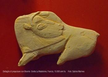 dettaglio di propulsore con bisonte. Grotta La Madeleine, Francia. 15.000 anni fa. foto - sabina marineo