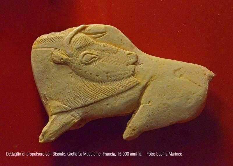 dettaglo di propulsore con bisonte. Riparo La Madeleine, Francia. 15.000 anni fa. foto - sabina marineo