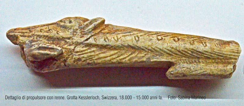 dettaglo di propulsore con renne. Riparo Kesslerloch, Swizzera. 18.000 - 15.000 anni fa. foto - sabina marineo