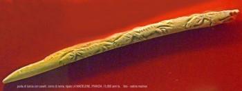 bastone forato con incisioni di renne dicorno di renna. Riparo Petersfels, Germania. foto - sabina marineo
