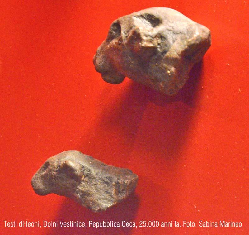 testine di leone, Dolni Vestonice, Repubblica Ceca. 25.000 anni fa. foto - sabina marineo