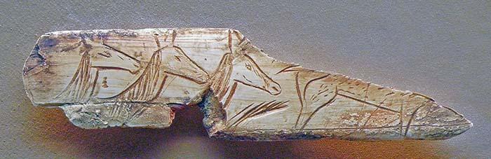 Teste di tre cerve. Grotta Aven d'Orgnac, Ardeche, Vallon Pont d'Arc, ca.40 km nord-ovest di Orange, Francia. 12.000 anni fa. foto - Gerbil CC-BY-3.0