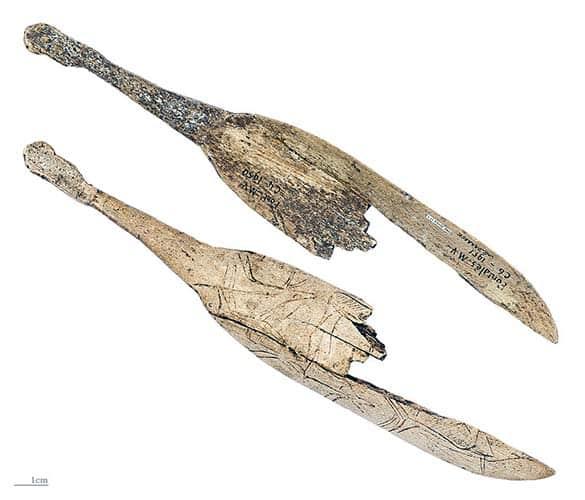 Cucchiaio con incisione di renna su corno di renna. Fontales, Saint-Antonin-Noble-Val, Tarn e Garonne, Francia. 13.500 - 12.000 anni fa. foto - Didier Descouens CC BY SA 4.0