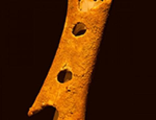 Il flauto del Neanderthal e la scoperta della musica