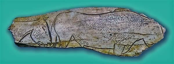 Incisione di cavalli su osso. Grotta El Pendo, Carmargo, tra Santander und Torrelavega, Cantabria. 18.000 - 12-000 anni fa. foto - José-Manuel-Benito-Álvarez CC-BY-SA 2.5