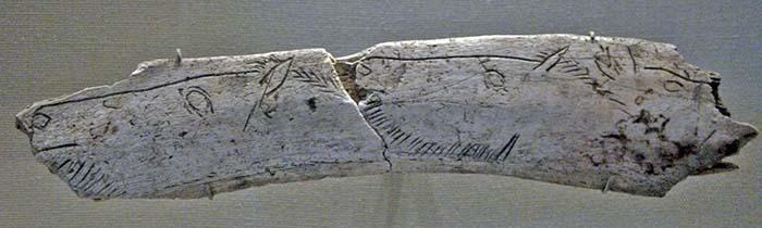 Incisione di teste di cavalli su osso, Grotta Courbet, Penne-Tarn, Francia. 12.500 anni fa. foto - Johnbod CC-BY-SA 3.0