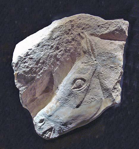 Rilievo di testa di cavallo. Roc-aux-Sorciers. Angles-sur-l'Anglin, Francia. 12.000 anni fa. foto - World Imaging CC BY SA
