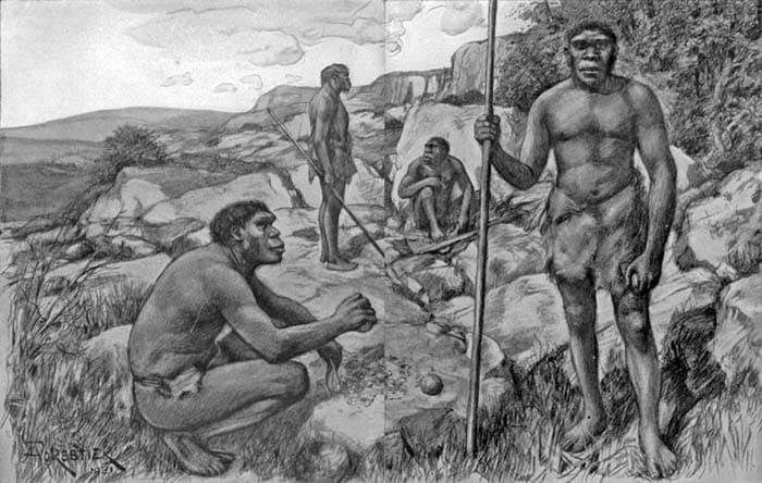 Homo erectus. Gruppo intorno al fuoco. Illustrazione di Amédée Forestier - Dominio pubblico
