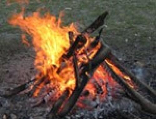 Quando l'uomo scoprì il fuoco. La scoperta del fuoco nel Paleolitico