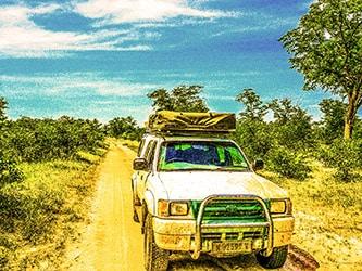 Sulla pista nella Valle del Luangwa in Zambia. Copyright Sabina Marineo