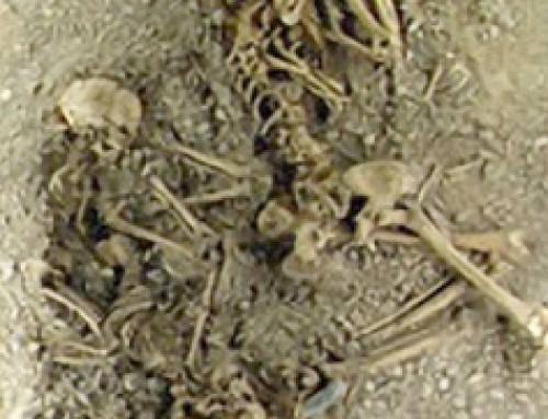 Il giallo di Eulau e il terzo DNA alle origini d'Europa