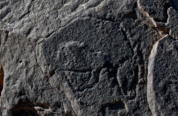 Wadi Abu Subeira. Raffigurazione di uro con la testa verso il basso. Foto: Per Storemyr/www.per-storemyr.net. Link al suo articolo