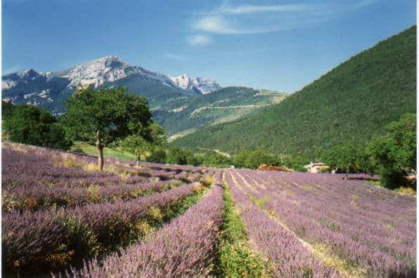Paesaggio del dipartimento francese di Drôme in cui si trova il riparo Mandrin. Foto: Erwin Frederking GFDL/CC-by-sa-2.0-de
