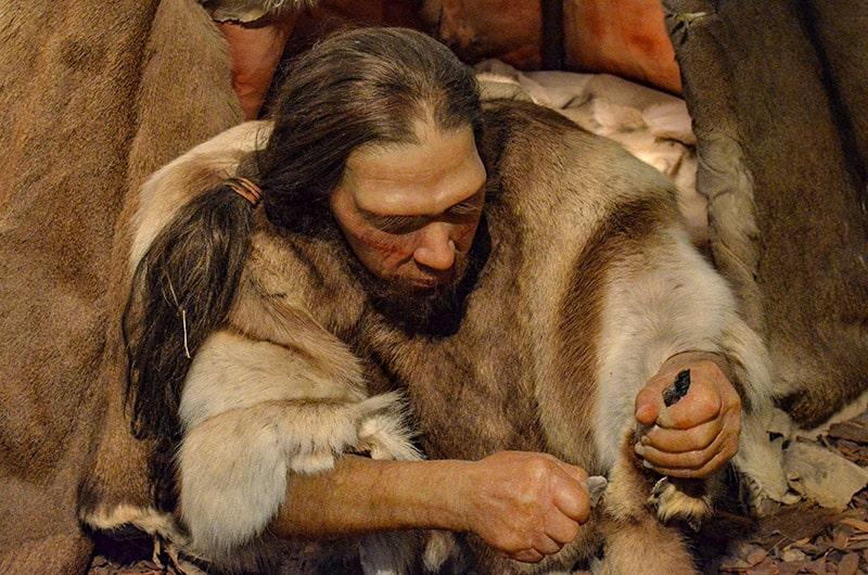 Ricostruzione di Neanderthal, Museo di Neandertahl di Mettmann. Foto: Sabina Marineo