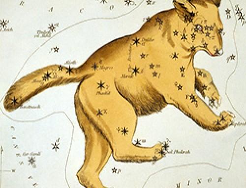 Le origini dei nostri miti risalgono al Paleolitico