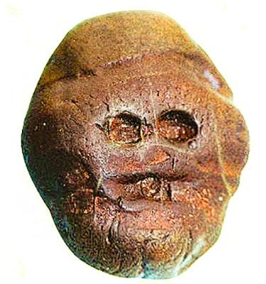 Makapansgat pebble, forse la scultura più antica del mondo scoperta in Africa nella Makapan Valley.