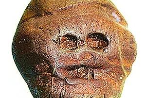 Makapansgat pebble la scultura più antica del mondo?