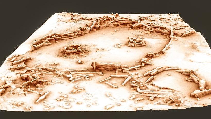 Una ricostruzione 3D dei cerchi di pietra della grotta di Bruniquel.© Muth,Mora/Archéovision/Achéotransfert/Nature