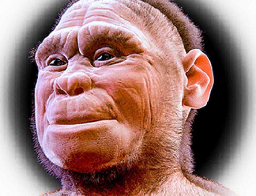Homo floresiensis. L'isola dei nani