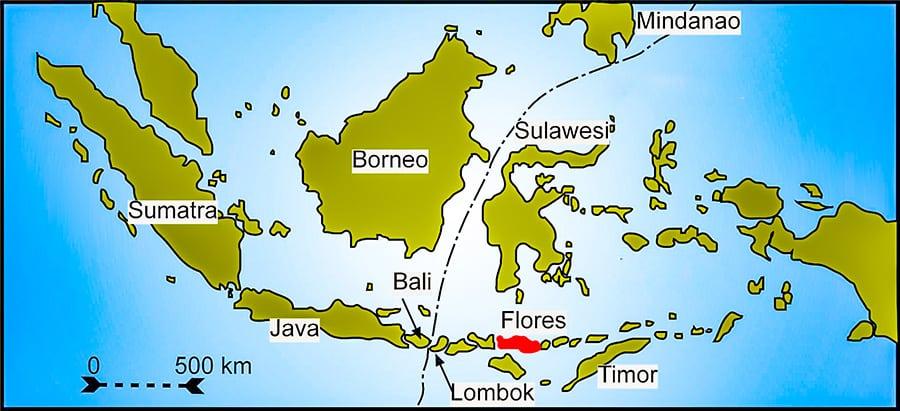 L'isola di Flores, in Indonesia. Qui, nelle grotte di Mata Menge e Liang Bua sono stati trovati i resti e le tracce dell'Homo Floresiensis, detto anche Uomo di Flores. Copyright: Gunnar Ries CC BY SA 2.5