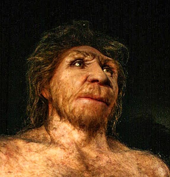 Homo heildelbergensis. Museo de la Evolución Humana, Burgos. Nachosan CC-BY-SA 3.0