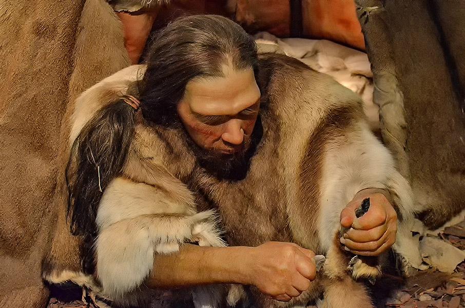 Ricostruzione uomo di Neanderthal. Museo Neanderthal, Mettmann, Germania. ©Reimund Schertzl
