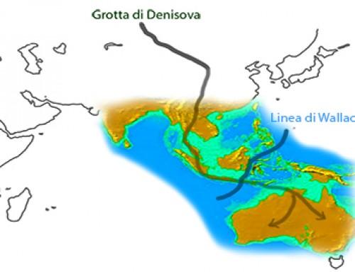 Uomo di Denisova: per primo in Australia?